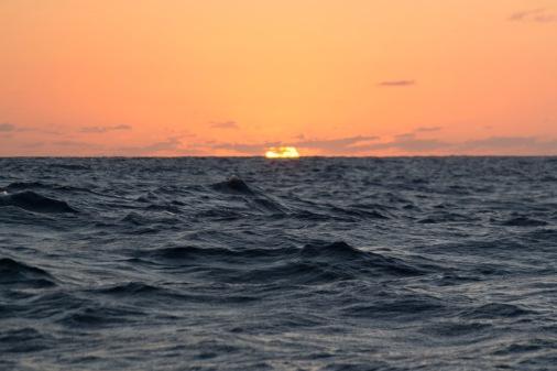 PPJ4_Sunset