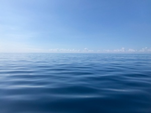 The Pacific Ocean, honoring its name